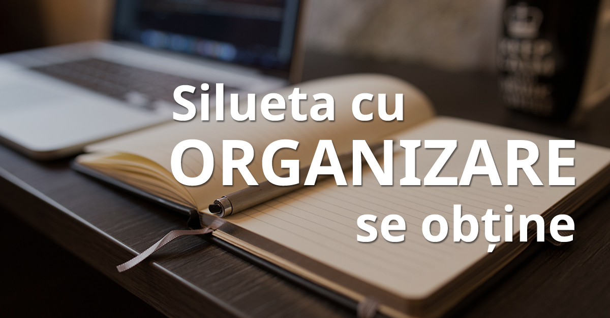 10 Silueta Organizare