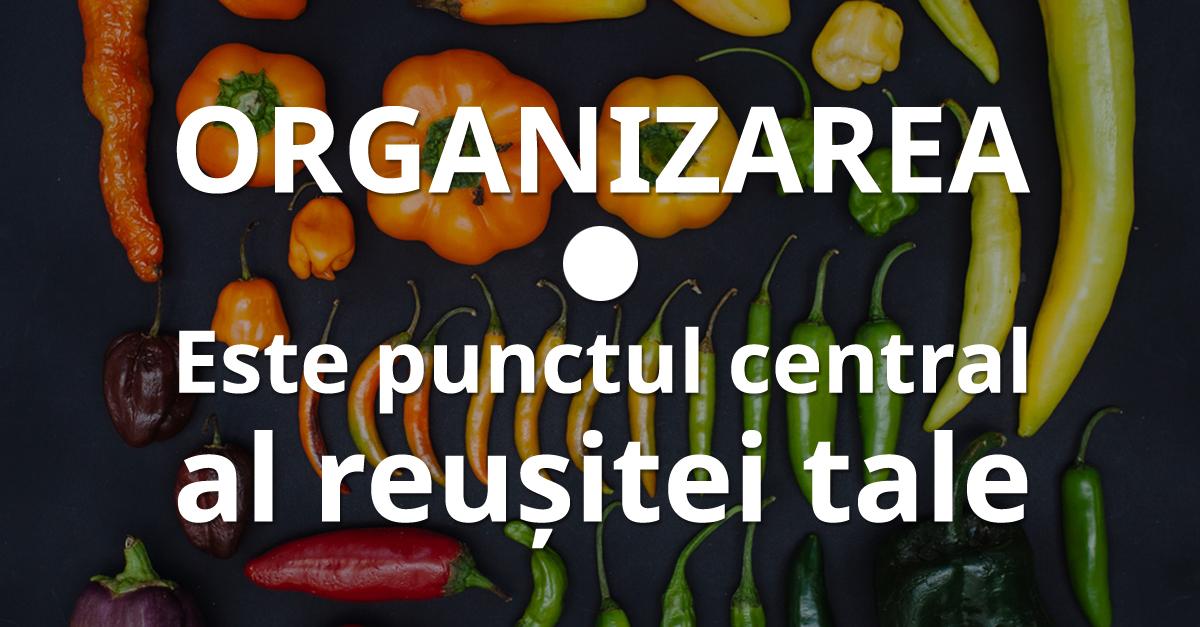 Organizarea Este Punctul Central Al Reușitei Tale